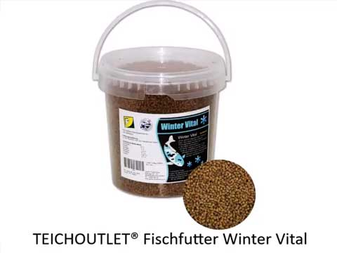 Winter vital 2mm teichfreund fischfutter ca 800g sinkend for Teich fische winter